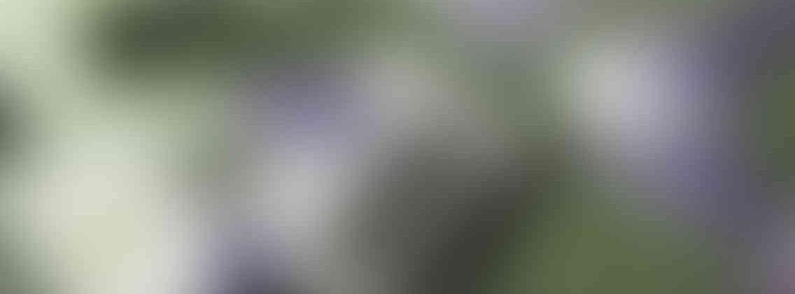 http://delhiwebsitedesigning.in/wp-content/uploads/2013/03/relay_slide_3_v01-1136x420.jpg