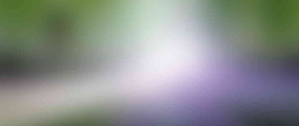 http://delhiwebsitedesigning.in/wp-content/uploads/2013/03/standout_slide_1_v01-1136x480.jpg