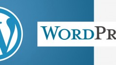 wordpresswebdevelopmentdelhi
