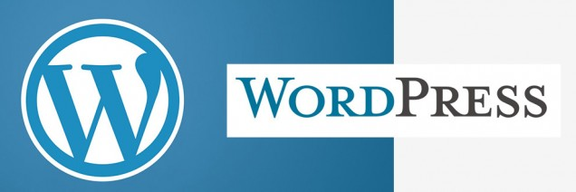 wordpresswebdevelopmentdelhi