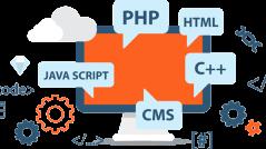 best web designing company delhi