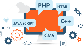 web-development-company-vikaspuri