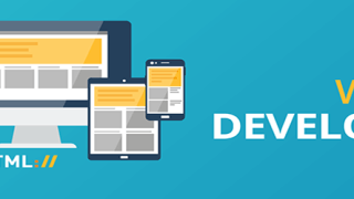 best-web-development-company-delhi