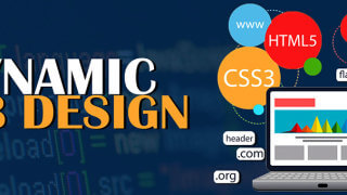 best web designing company in delhi